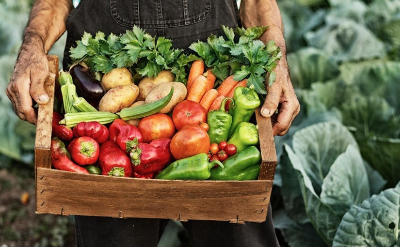 From Farm to Table: Support Lewisburg's Farmers Markets