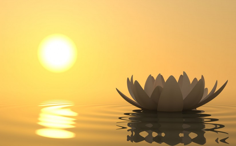 The Transformative Effects of Meditation
